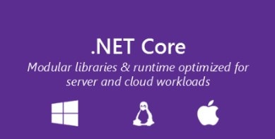 .NET Core fundamentals in one picture.