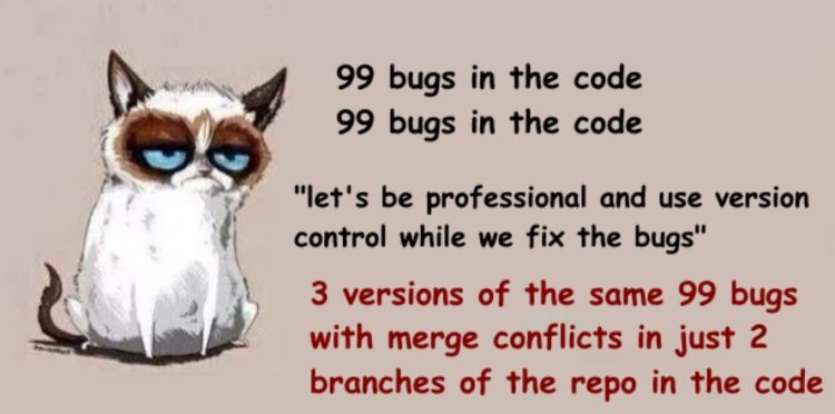 Version Control problems