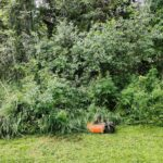Frequently Asked Robot Lawn Mower Questions